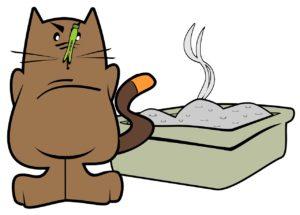 Katze macht vor das Katzenklo