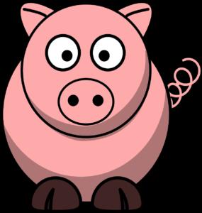 darf katze schweinefleisch fressen