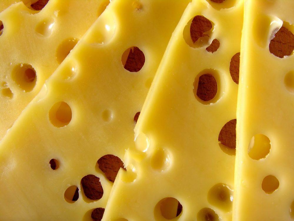dürfen katzen käse essen